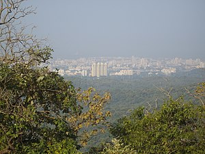 Borivali - View of Borivali skyline from Sanjay Gandhi National Park