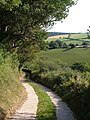 Slapton Bridleway 7 approaching Lower Coltscombe - geograph.org.uk - 235157.jpg