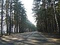 Slokas iela - panoramio (38).jpg