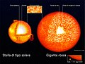 Solar-type Red Giant structure it.jpg