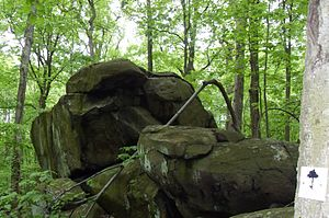 Boulders in the Sourland Mountain Preserve, Ne...