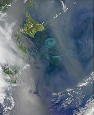 Kuroshio Current - The Oyashio Current colliding with the Kuroshio Current near Hokkaido. When two currents collide, they create eddies. Phytoplankton growing in the surface waters become concentrated along the boundaries of these eddies, tracing out the motions of the water.
