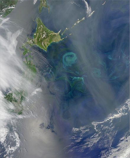 The Oyashio Current colliding with the Kuroshio Current off the coast of Hokkaido. When two currents collide, they create eddies. Phytoplankton growing in the surface waters become concentrated along the boundaries of these eddies, tracing out the motions of the water. Spring Bloom Colors the Pacific Near Hokkaido.jpg