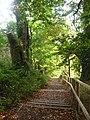 Stairway in Autumn - geograph.org.uk - 1870656.jpg