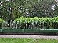 Starogard Park 6.JPG