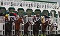 Start of a Horse Race (3431708779).jpg