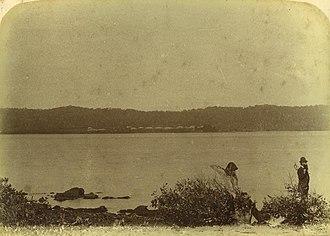 Dunwich, Queensland - Dunwich shore viewed from Peel Island, ca. 1885