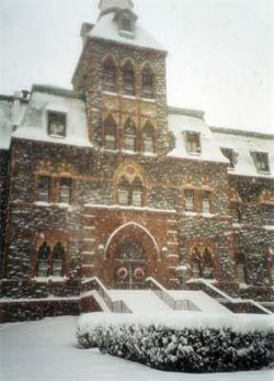Stevens in the snow.jpg