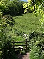 Stile near Old Mill Cove - geograph.org.uk - 819315.jpg