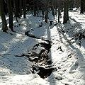 Stockbach im Schnee.JPG