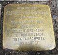 Stolperstein für Alfred Neuburger in Neu-Ulm.JPG