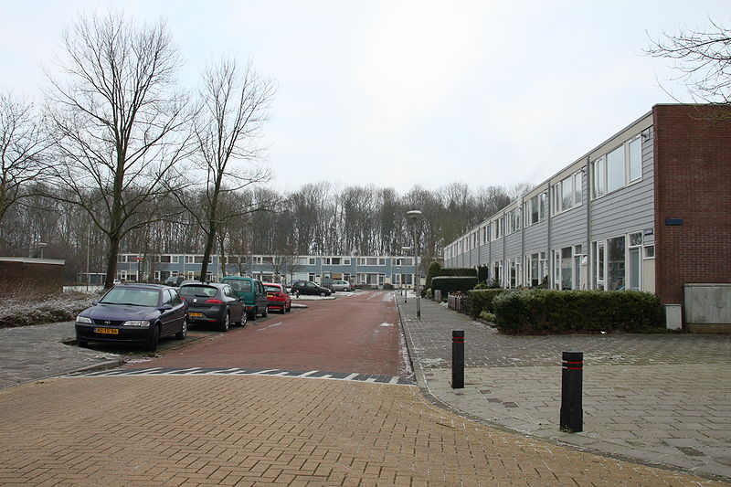 File:Straat Nagele.JPG