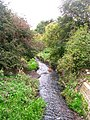 Stream - Flanshaw Road - geograph.org.uk - 993725.jpg
