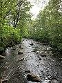 Stream at Bäljane å, Söderåsens nationalpark, Sweden.jpg