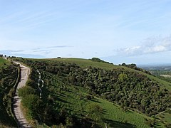Streat Hill - geograph.org.uk - 1523265.jpg