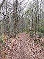 Stromberg-Schwäbischer Wald-Weg HW 10 - panoramio.jpg