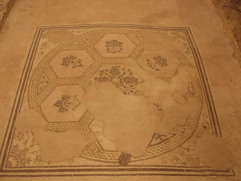 File:Suasa, Domus dei Coiedii - 02 - Mosaico dell'Acanto.JPG