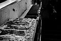 Survivors Staircase 2014 vc.jpg