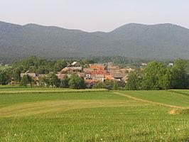 Municipality of Ribnica