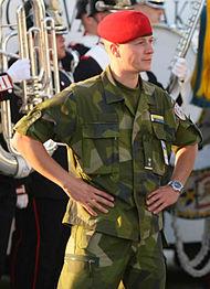 Dopping informationschef i forsvaret