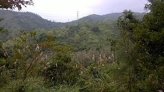 Tai Lam Country Park - Tai Lam Country Park