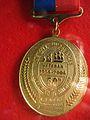 Tall ships race Veteran medal.jpg