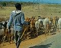 Tanzanian Workers 01.jpg