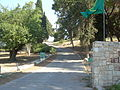 Tel Megiddo 3630.JPG