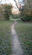 Terry Hershey Park trail.jpg