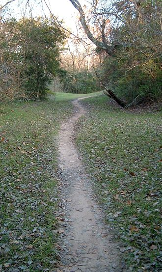 Terry Hershey Park - A  trail along the bayou.
