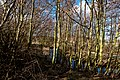 Texel - Maartenhuis - Nature Path 'Alloo' - View NE I.jpg