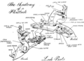 Tha Anatomy of Flintlock.png