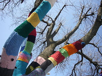 yarn covering on a tree branch as art