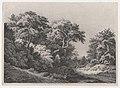 The Edge of the Woods, near Rambouillet MET DP874301.jpg