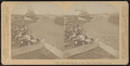 The Race at Mammoth Park, Long Branch, N.J, from Robert N. Dennis collection of stereoscopic views 4.png