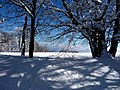 The Saleve during Winter - panoramio - Patrick Nouhailler's… (2).jpg