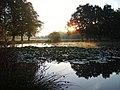 The pond on Yateley Green - geograph.org.uk - 645824.jpg