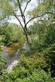 The river (1247200098).jpg