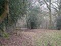 Through the woods to Acton Scott - geograph.org.uk - 1101952.jpg