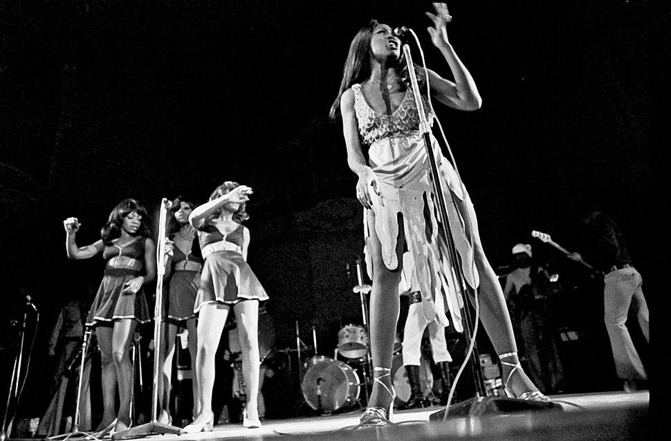 Tina Turner 2311720045