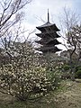 To-ji National Treasure World heritage Kyoto 国宝・世界遺産 東寺 京都121.JPG