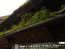 Toiture v g tale wikip dia for Maison avec toit vegetal