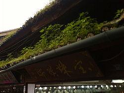 toiture terrasse bois plan charpente