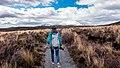 Tongariro National Park, New Zealand (Unsplash AjRxpTzZ-SU).jpg