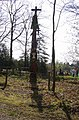 Totem pole, Wyre forest - geograph.org.uk - 393621.jpg