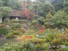 庭园和清涟亭