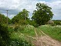 Track towards Playford - geograph.org.uk - 1306236.jpg