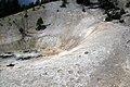 Tracks of Ursus americanus, the American black bear in Yellowstone.jpg