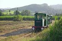 Train-des-plantations.jpg