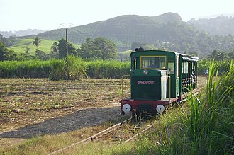 Le Train des Plantations - Heritage train in a sugarcane plantation